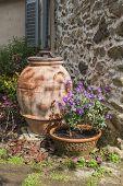 Spring Garden In Italy