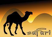 Camel In Desert Sunset