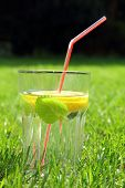glass of cold water with lemon and mint leaf and straw
