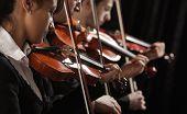 Violinistas en concierto