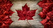 image of fall day  - The image of the flag of Canada constructed entirely out of genuine maple leaves - JPG