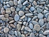 picture of rocking  - wet pebble stones concept for horticulture and zen - JPG