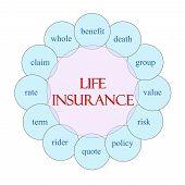 Life Insurance Circular Word Concept