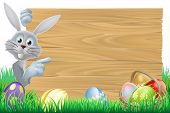 image of peeking  - White Easter rabbit bunny pointing at a sign with chocolate Easter eggs and basket - JPG