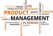 Word Cloud - Product Management