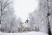 stock photo of uglich  - White trees and church in winter in Uglich - JPG