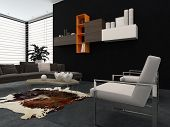 Modern lounge with contemporary armchairs, a comfortable sofa, animal skin on the floor and wall-mou