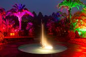 Light Show In A Night Park In Bad Pyrmont