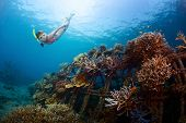 Young lady gliding underwater near metal structure with planted corals in Biorock restoration area i