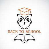 Vector Image Of An Owl With College Hat And Book