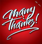 MANY THANKS hand lettering (vector)