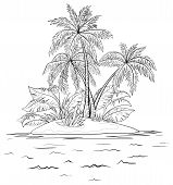 Island with palm, contours