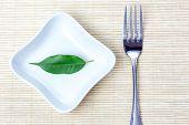 Green Leaf As Vegetarian Diet