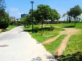 jardines de turia Valencia road