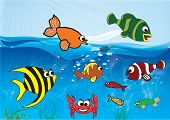 foto of sea-scape  - Underwater scene with 8 different types of fish and a happy crab - JPG