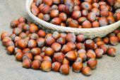 Pile Of Mixed  Hazelnuts