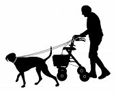 image of dog-walker  - Detailed and accurate illustration of old woman with dog - JPG