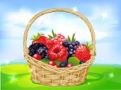 Basket Full Of Fruits On Green Meadow - Vector Illustration
