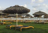 Luxury Sunbeds On Grass Near Mediterranean Sea