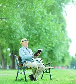 Senior gentleman reading a book in park seated on wooden bench shot with tilt and shift lens