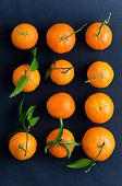 Tangerines Over Dark Blue Cloth