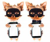 super hero puppy dog with phone