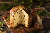 Homemade Panettone Fruit Cake