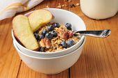 Healthy Organic Granola
