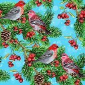 Winter bird, fir branch and rowan