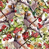 colorful bird, flower and rowan