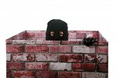 image of shoplifting  - A genuine Bad Guy aka Burglar pops his head out of a chimney looking to see if the coast is clear for his escape after robbing money and valuables from a persons home - JPG