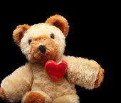 Teddy Lover