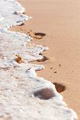 Footprints In Foamy Waves