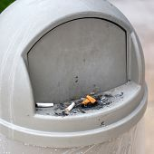 Ashtray Bin Outdoors