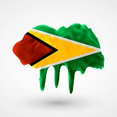 Flag of Guyana painted colors