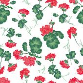 Soft red geranium seamless pattern