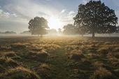 Beautiful Autumn Dawn Countryside Landscape