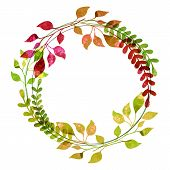 image of thanksgiving  - Watercolor wreath from colorful autumn leaves - JPG