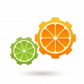 Vector Logo Design Template. Orange And Lime Gear Shape, Business Technology, Ecology, Organic Produ