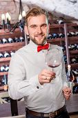 picture of wine cellar  - Sommelier kneading wine in the wine glass in the wine cellar - JPG