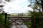 Five bar gate on farm.