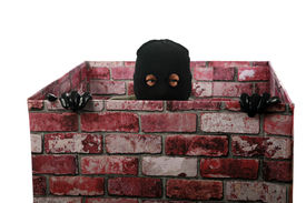 pic of shoplifting  - A genuine Bad Guy aka Burglar pops his head out of a chimney looking to see if the coast is clear for his escape after robbing money and valuables from a persons home - JPG