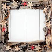 stock photo of driftwood  - Starfish sea shells - JPG