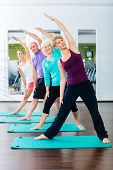 picture of gymnastic  - Group of senior people and young woman and men in fitness gym doing gymnastics  - JPG