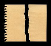 picture of cut torn paper  - Torn Paper texture - JPG