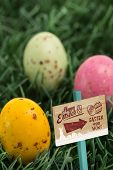 stock photo of laying eggs  - Easter egg hunt sign against three small easter eggs nestled in the grass - JPG