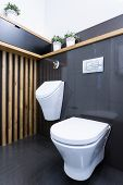 picture of pissoire  - Beauty luxury toilet interior in modern apartment - JPG