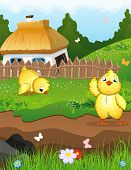 pic of farmhouse  - Little chicks on a green meadow in front of a farmhouse with a thatched roof - JPG