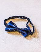 stock photo of tied  - Beautiful bow tie - JPG