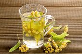 foto of linden-tree  - Glass of tea with linden flowers on a wooden background - JPG